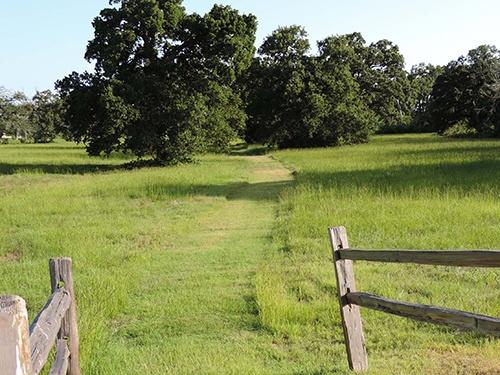 king-oaks-nature_trail